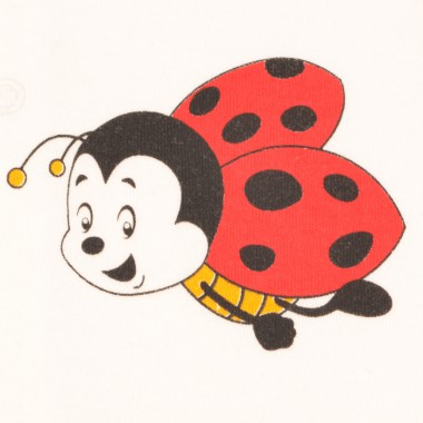 Komplet Niemowlak Lady Bug...